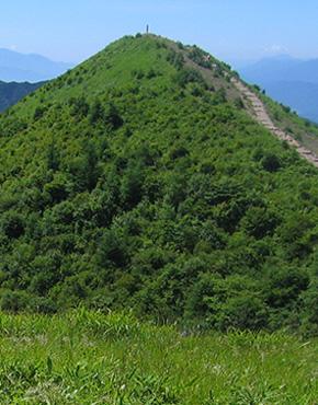 飯盛山コース