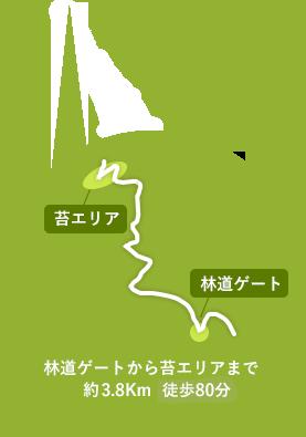 苔と湧水の南沢遊歩道までの経路詳細